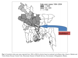 Leishmaniasis prevalence map (source unknown).