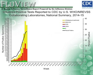 Influenza subtypes - mainly H3N2 influenza A in this current influenza season in the US (Source: CDC Flu Weekly).