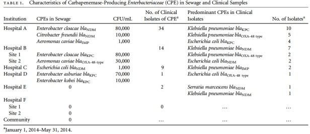 Breakdown of types of CRE in sewage and clinical samples by participating hospital.