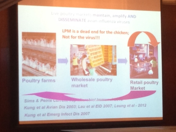 A slide from Prof. Malik Peiris' talk - live poultry markets in China and the spread of influenza from chickens to other chickens and humans.