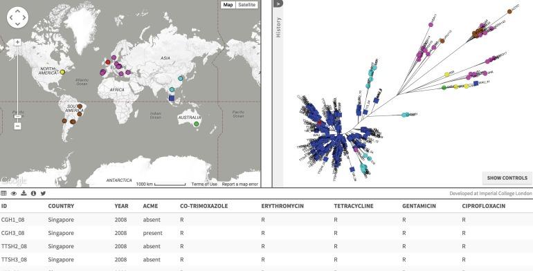 Screen capture of Singapore ST239-MRSA-III data on Microcreact