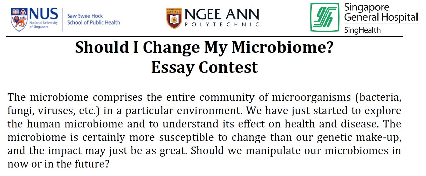 sg50 essay competition