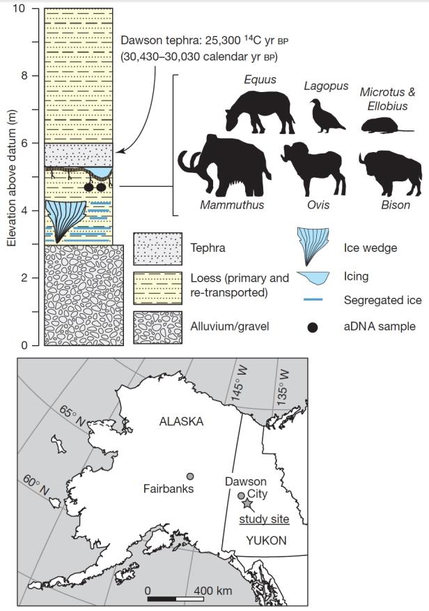Figure-permafrost-AMR
